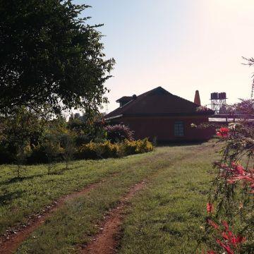 kokwet house